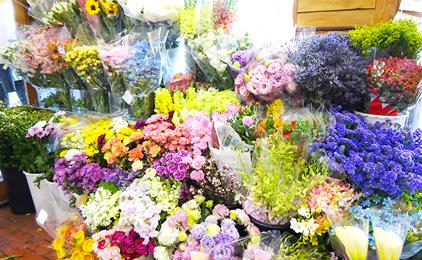 さくらフローリスト店内スタッフ〔花の手入れ、販売など〕画像