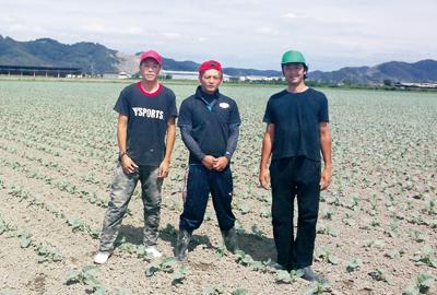 株式会社I Loveファーム 笠岡ブロッコリーの収穫農作業〔高時給〕画像