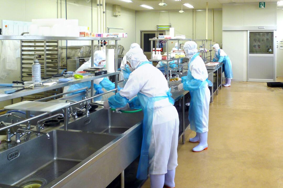 株式会社ガイア 高知工場調理補助〔食材の下処理・盛付け・洗い物等〕画像