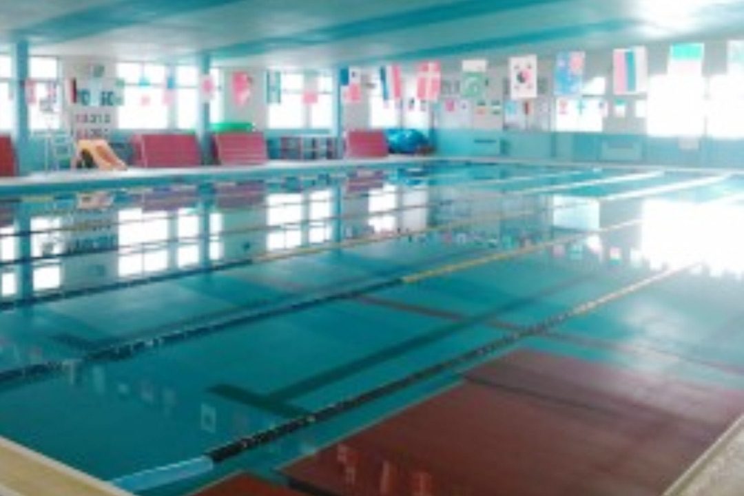 伊予スイミングクラブ水泳指導画像