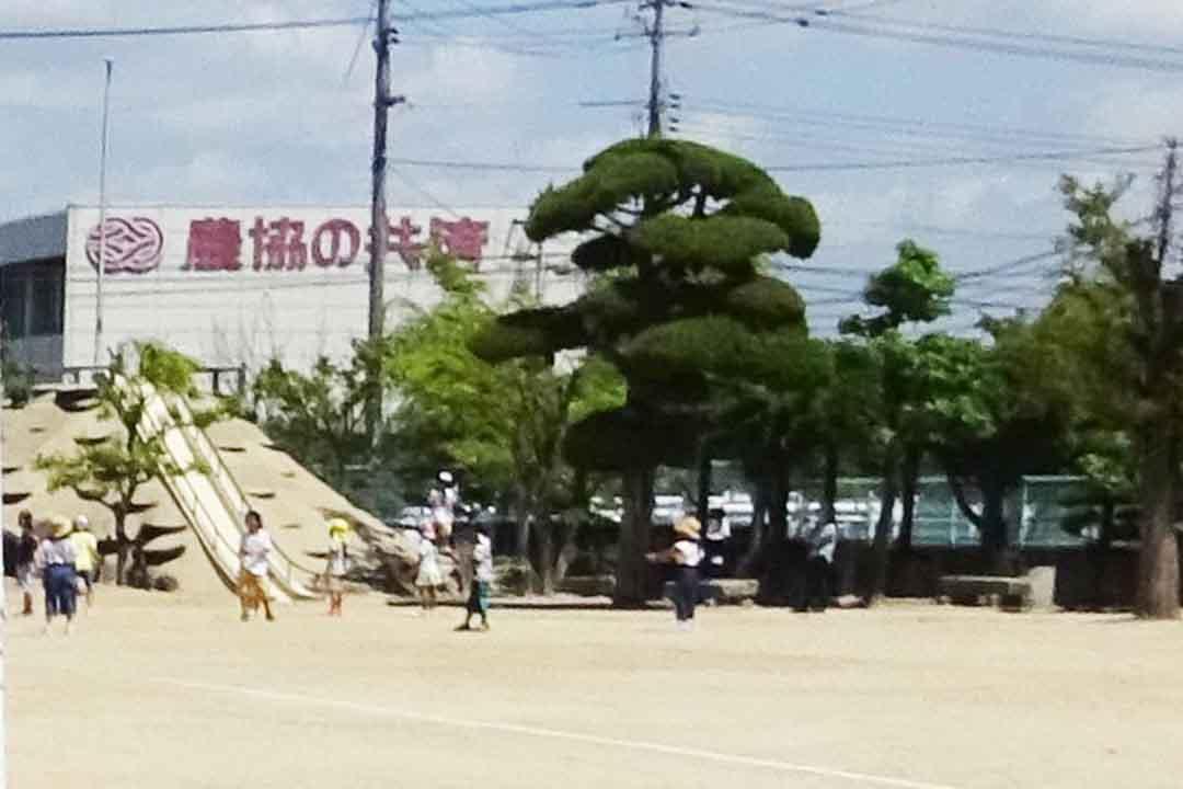 福田にこにこクラブ福田小学校の学童保育支援員画像